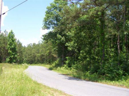 246 Acres Iron Hill Rd : Taylorsville : Bartow County : Georgia