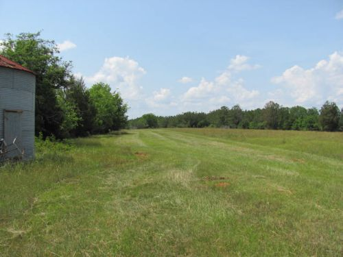 Beautiful Tract With Diversity : Georgetown : Quitman County : Georgia