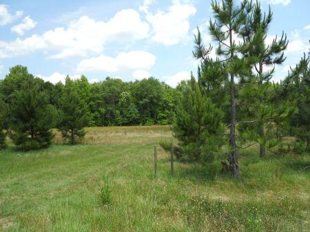 33+ Beautiful Acres Of Land : Millen : Jenkins County : Georgia