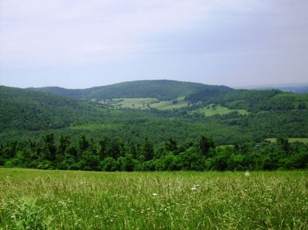 250 +/- Acre Ranch With A View : Oxley : Searcy County : Arkansas
