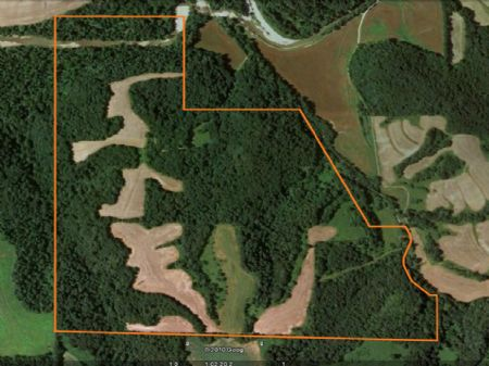 245 Acres, Superior Hunting Farm : New Canton : Pike County : Illinois