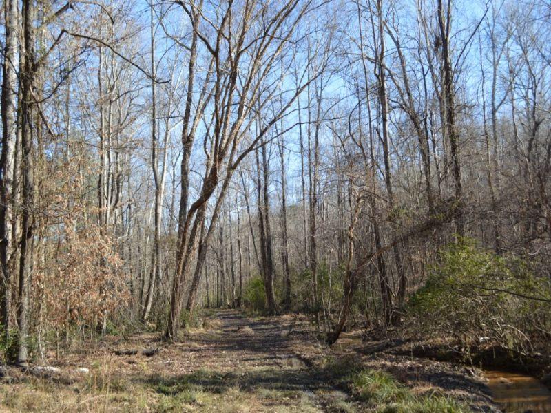 21 Acre Recreational Tract : Union : Union County : South Carolina