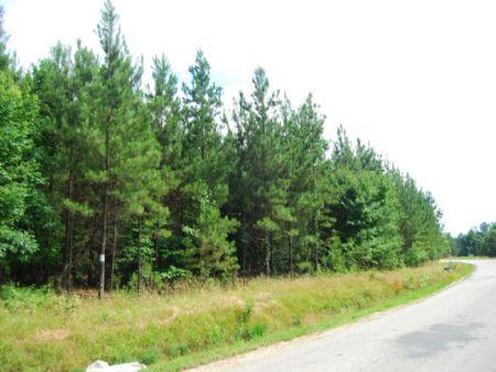 47.5 Ac Near Sumter National Forest : Union : Union County : South Carolina