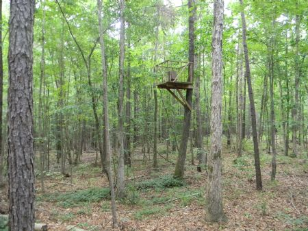 Great Hunting Retreat : Georgiana : Butler County : Alabama