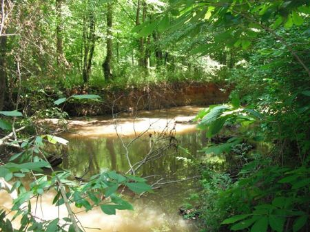 Hunting And Investment Property : Sparta : Hancock County : Georgia