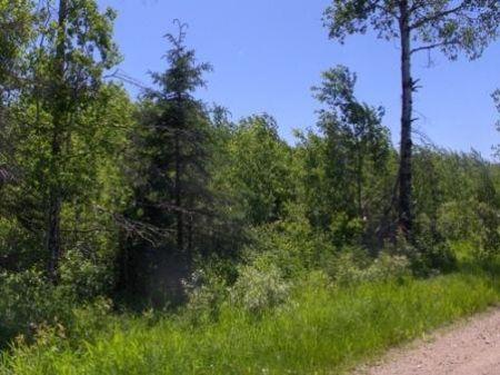Itasca, Liberty, 19-150-25, Gl4 : Bigfork : Itasca County : Minnesota