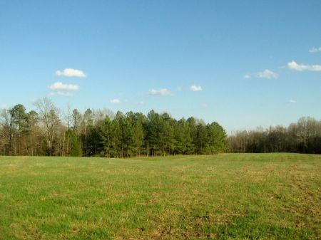 Great Personal Hunting Getaway : Crawfordville : Taliaferro County : Georgia