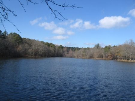 Recreational Tract With Large Pond : Greensboro : Greene County : Georgia