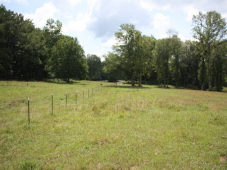 Ac188- 67 Acres Cr 24 : Wadley : Randolph County : Alabama
