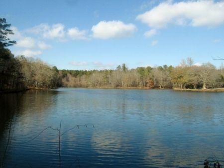 980 Acres Recreational Invest : Greensboro : Greene County : Georgia