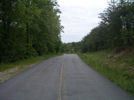 84 Ac Near Carters Lake - Ta4008b : Oakman : Gordon County : Georgia
