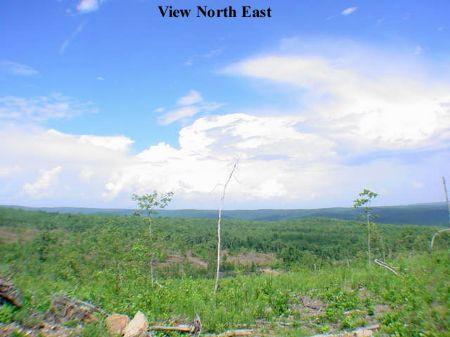 89 Mountain View : Mountain View : Stone County : Arkansas