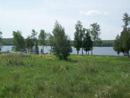 Tbd Gendzwill Dr  Mls #1051432 : Iron River : Iron County : Michigan
