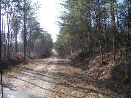 141 Acres South Of Paris Mountain : Cedartown : Polk County : Georgia