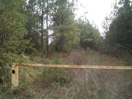 20 Acres Near Culp Lake Rd : Cedartown : Polk County : Georgia