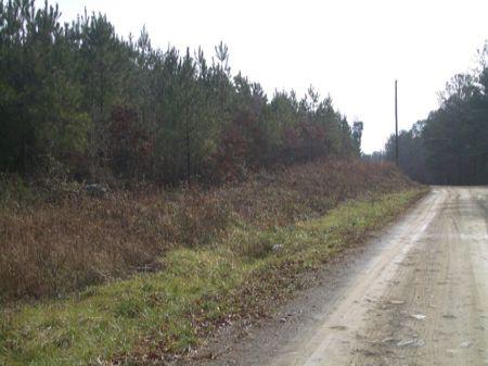 163 Acres On Silver Comet Trail : Cedartown : Polk County : Georgia