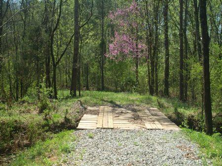 Jenkins Branch : Calhoun : McMinn County : Tennessee