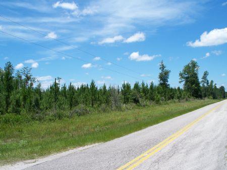 24 Acres Near Hilliard : Hilliard : Nassau County : Florida