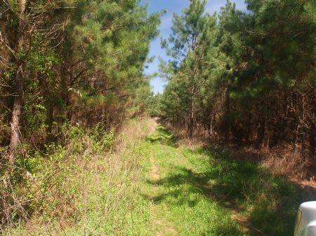 Riceville Etowah : Riceville : McMinn County : Tennessee