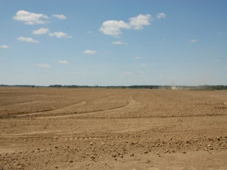1385 +/- Acre Investment Grade Farm : Wheatley : Saint Francis County : Arkansas