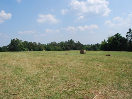 526 Acre Riverfront Cattle Farm : Union : Union County : South Carolina