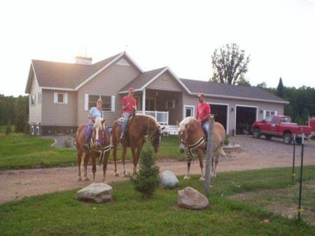332 Kalla Walla Tr Mls #1050169 : Crystal Falls : Iron County : Michigan