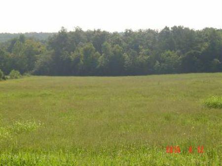 Luber Road 122 : Mountain View : Stone County : Arkansas