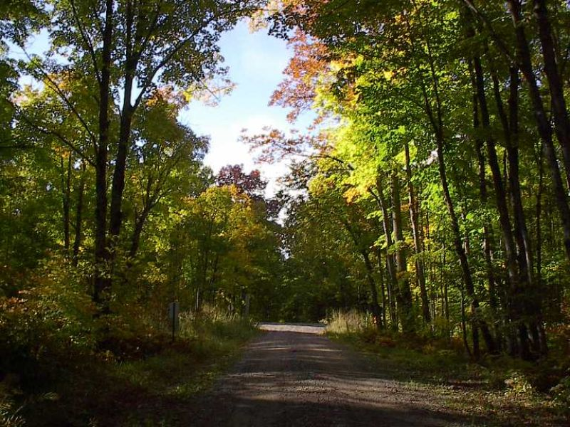 Lot 3 Co Rd 424 Mls #1049633 : Crystal Falls : Iron County : Michigan