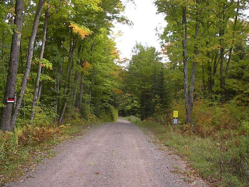 Lot 1 N. Anders Lane Mls #1049631 : Crystal Falls : Iron County : Michigan