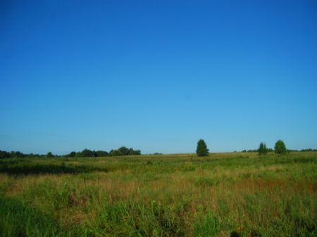 26 Acre Farm Near Inman : Inman : Spartanburg County : South Carolina