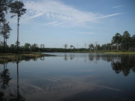 Miles Of River Frontage + Big Lake : Irwinton : Wilkinson County : Georgia