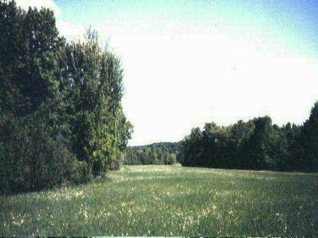 Lot 6  Myllyla Rd   Mls #1048431 : Arnheim : Houghton County : Michigan