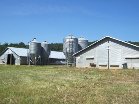 44+/- Acres With Poultry Houses : Clarkesville : Habersham County : Georgia