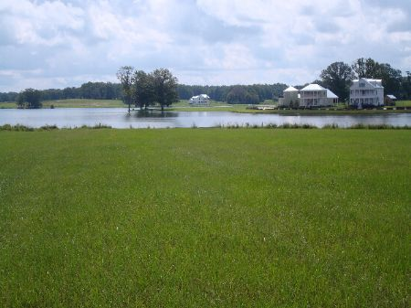 89 Spectacular Acres In Pike Road : Pike Road : Montgomery County : Alabama