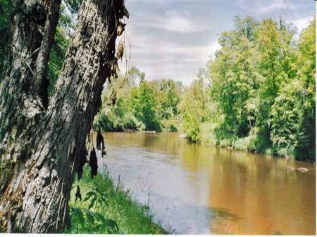 Tbd Off Pike Lake Rd Mls #1044417 : Tapiola : Baraga County : Michigan