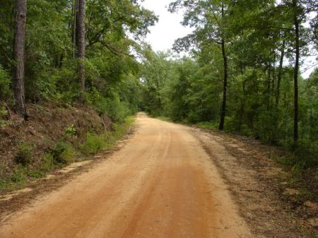75 Affordable Acres : Autaugaville : Autauga County : Alabama