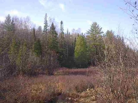 Tbd Dishno Rd Mls #1042718 : Humboldt : Marquette County : Michigan