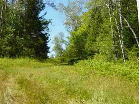 Lot C Nickle Rd Mls #1044300 : Iron River : Iron County : Michigan