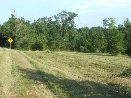 28.13 Acres Of Black Belt Hunting : Valley Grande : Dallas County : Alabama