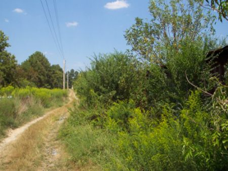 769 Fairview Road : Calhoun : Gordon County : Georgia