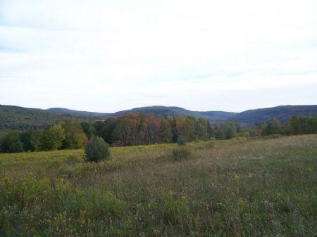 31+ Acres Woods & Meadows : Harford : Cortland County : New York