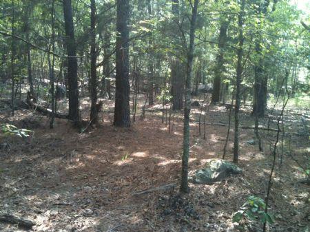 Ethel Road Estates Tract 4 : Antlers : Pushmataha County : Oklahoma