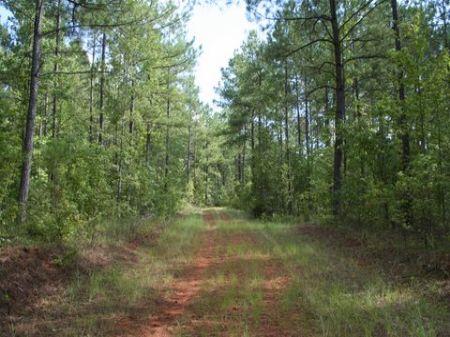 Gray Tract : Gray : Jones County : Georgia