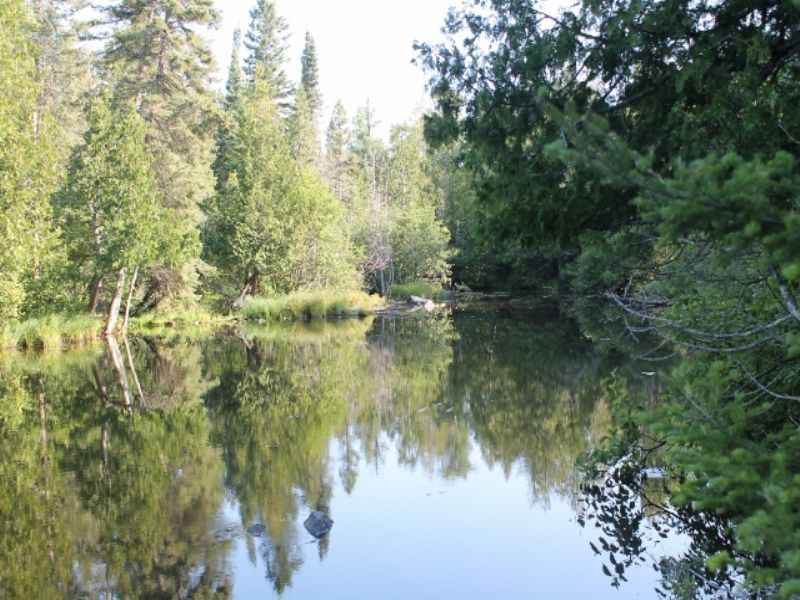 Tbd Old Beechwood Rd.  Mls #1042362 : Iron River : Iron County : Michigan