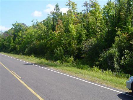 Tbd East Shore Road  Mls #1042095 : Bergland : Ontonagon County : Michigan