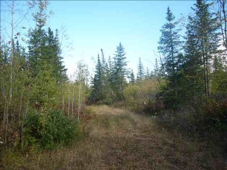 Tbd East Road  Mls #1041936 : Republic : Marquette County : Michigan