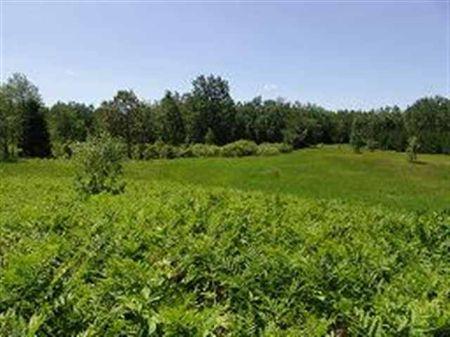 W8983 Bice Creek Rd  Mls #1041676 : Sagola : Dickinson County : Michigan