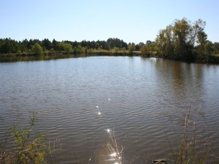 10 Acres With Lake Byram/terry Scho : Terry : Hinds County : Mississippi