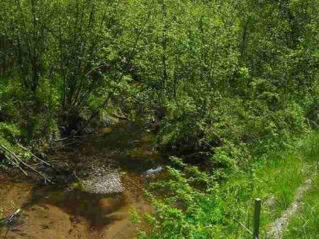 Tbd Menge Creek Road Mls #1012646 : L'anse : Baraga County : Michigan