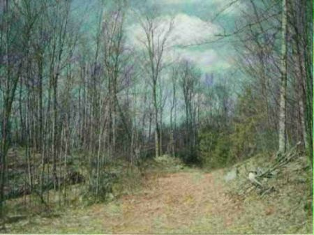 Tbd Off Craig Lake Rd Mls#1036779 : Three Lakes : Baraga County : Michigan